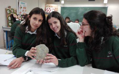 Estudio fósiles
